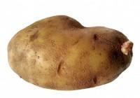 картофель польза и вред для здоровья