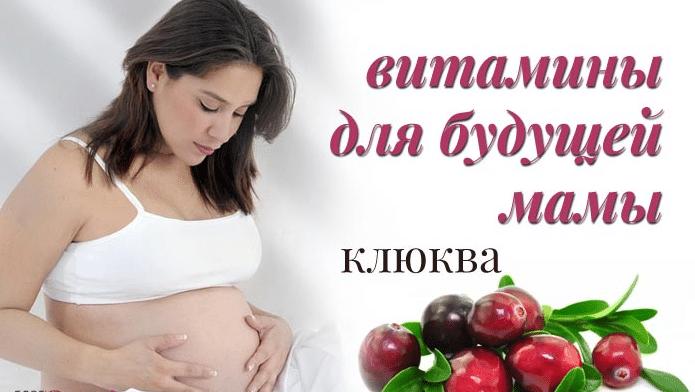 Клюква - полезные свойства и противопоказания при беременности, диабете