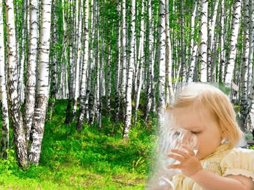 чем полезен берёзовый сок детям