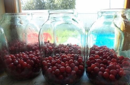 Простой рецепт компота из вишни на зиму без стерилизации